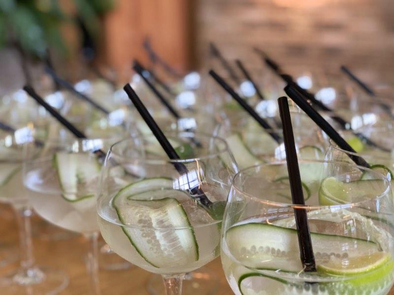 gin tonic glazen de liefde van je leven