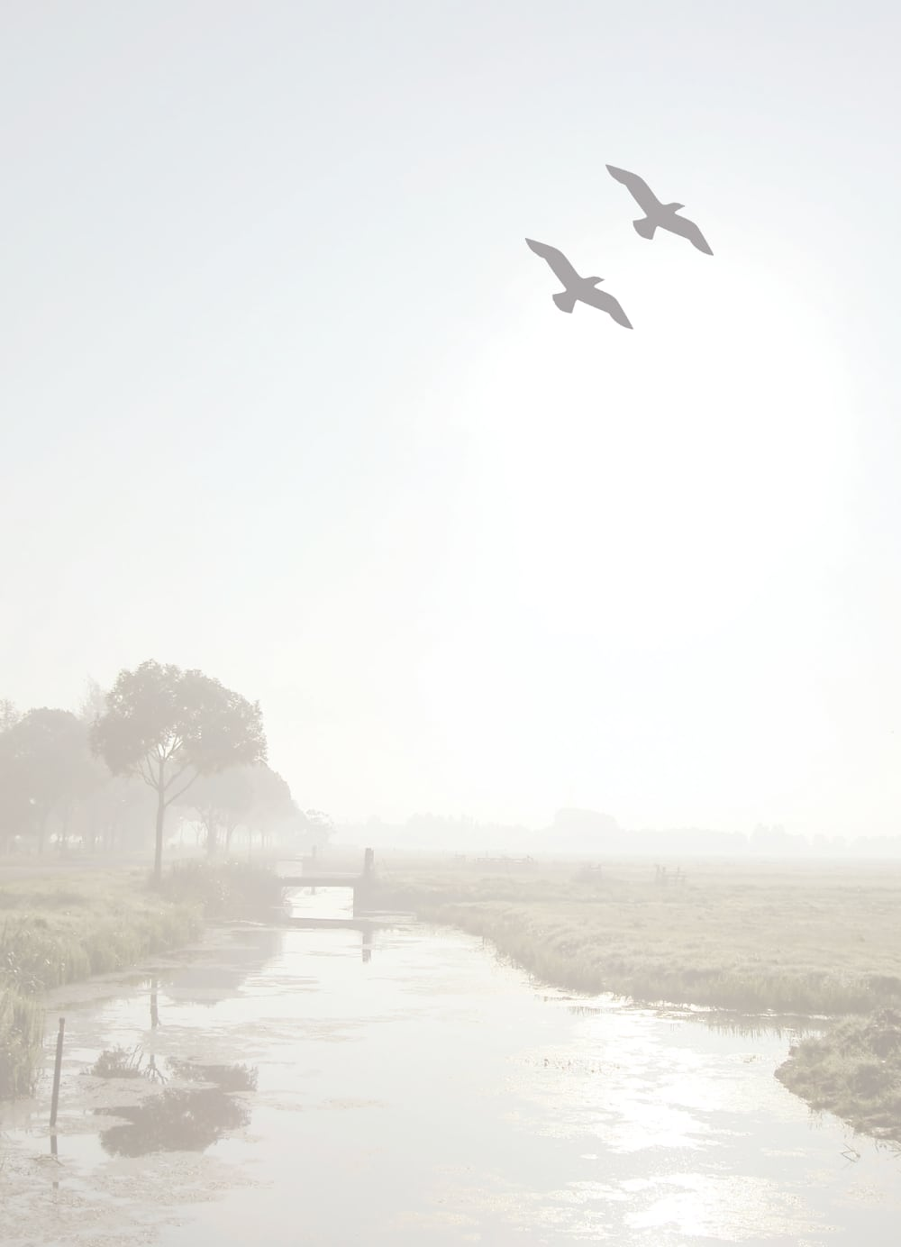 Rouwkaart voorkant Willy Sonneveld - Blaakmeer